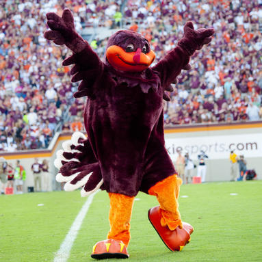 HokieBird on the field at Lane Stadium during Virginia Tech Hokies Football Game